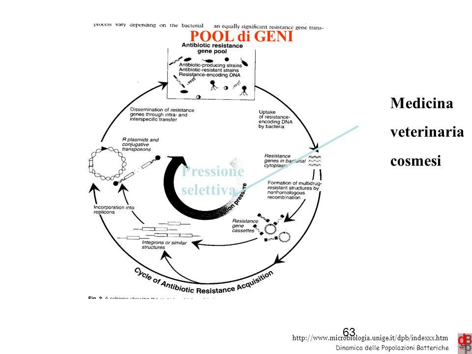 http://www.microbiologia.unige.it/dpb/indexxx.htm Dinamica delle Popolazioni Batteriche POOL di GENI Pressione selettiva Medicina veterinaria cosmesi