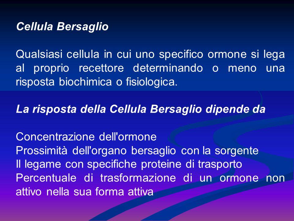 Cellula Bersaglio Qualsiasi cellula in cui uno specifico ormone si lega al proprio recettore determinando o meno una risposta biochimica o fisiologica