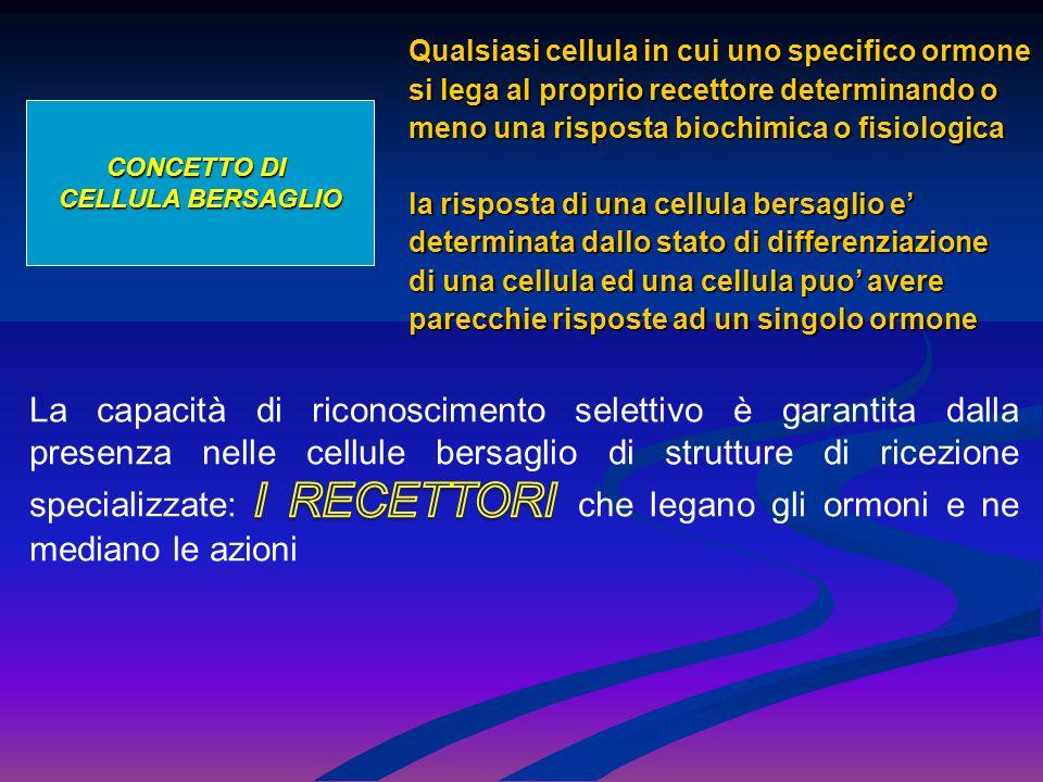 CONCETTO DI CELLULA BERSAGLIO Qualsiasi cellula in cui uno specifico ormone si lega al proprio recettore determinando o meno una risposta biochimica o