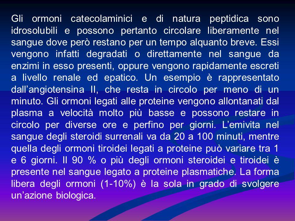 Gli ormoni catecolaminici e di natura peptidica sono idrosolubili e possono pertanto circolare liberamente nel sangue dove però restano per un tempo a