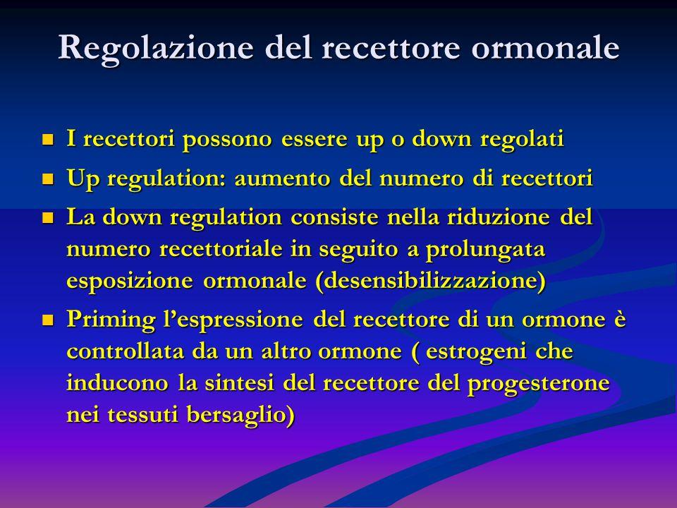 Regolazione del recettore ormonale I recettori possono essere up o down regolati I recettori possono essere up o down regolati Up regulation: aumento