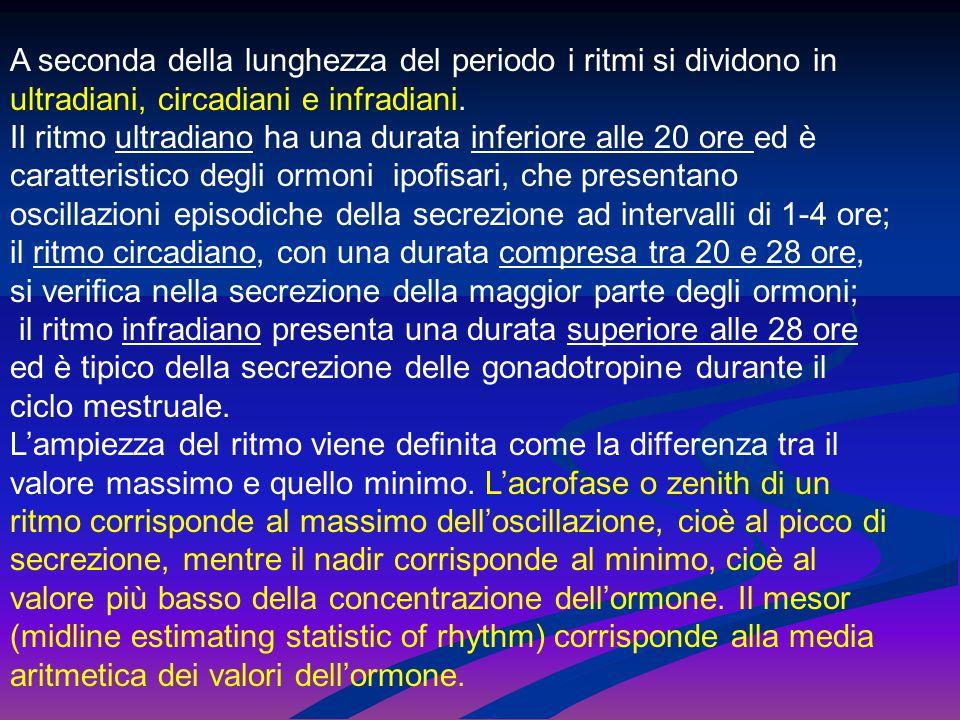 A seconda della lunghezza del periodo i ritmi si dividono in ultradiani, circadiani e infradiani. Il ritmo ultradiano ha una durata inferiore alle 20
