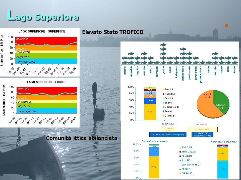 G.R.A.I.A. SRL L ago Superiore Elevato Stato TROFICO Comunità ittica sbilanciata
