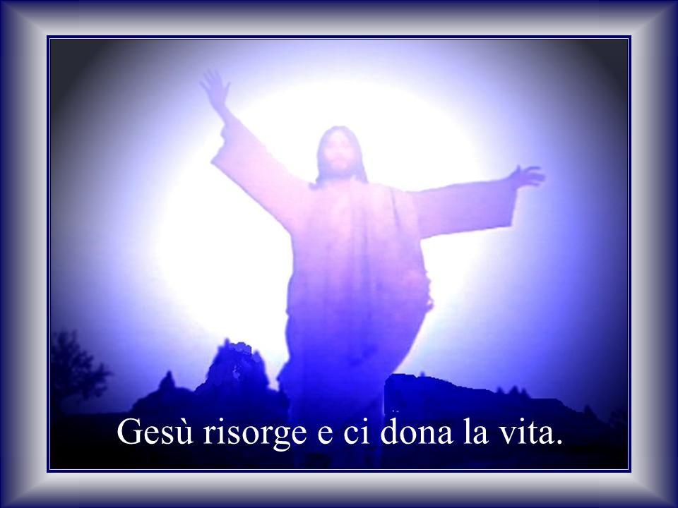 Gesù,Tu che sei venuto a salvarci Facci comprendere la VITA NUOVA.