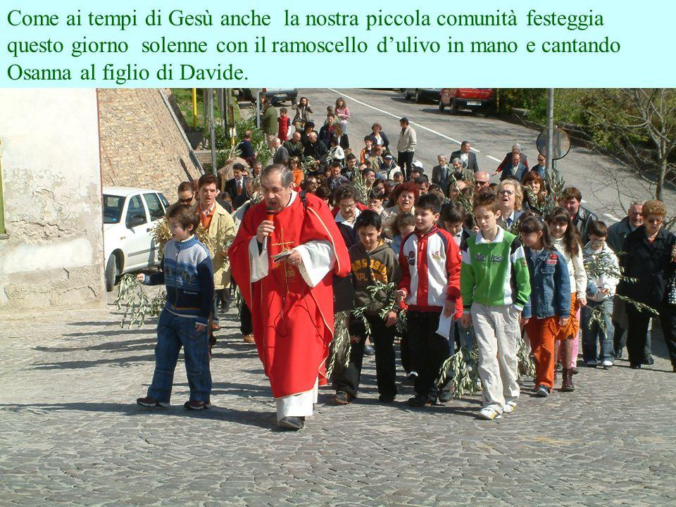 Domenica 9 Aprile 2006 Benedizione delle palme