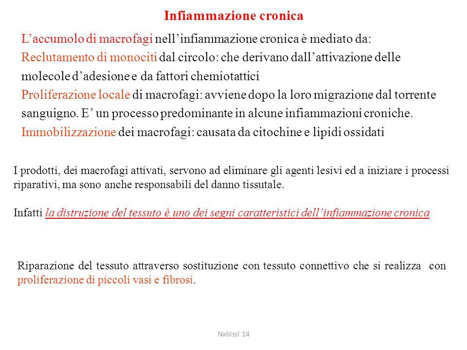 Cause dell'infiammazione cronica Infezioni persistenti: agenti virali, batterici o funginei che sono dotati di bassa tossicità ed evocano una risposta
