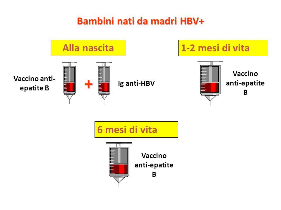 Bambini nati da madri HBV+ + Alla nascita Vaccino anti- epatite B Ig anti-HBV 1-2 mesi di vita Vaccino anti-epatite B 6 mesi di vita Vaccino anti-epatite B