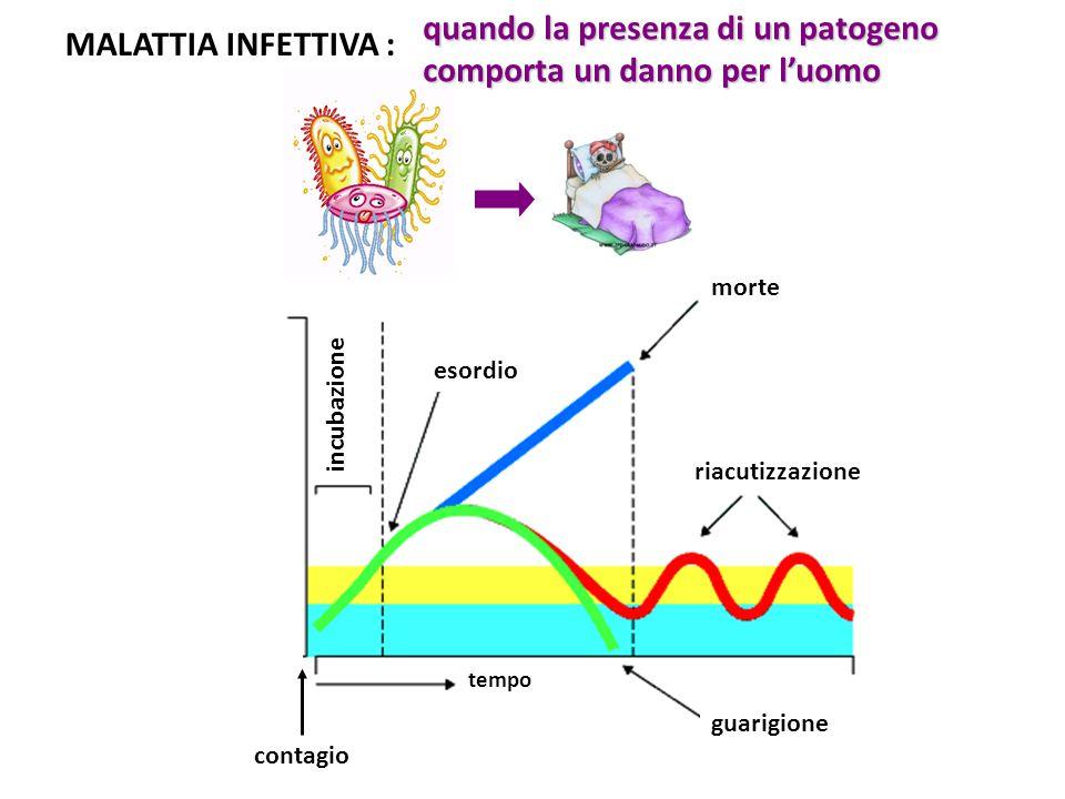 quando la presenza di un patogeno comporta un danno per l'uomo MALATTIA INFETTIVA : morte esordio riacutizzazione guarigione tempo contagio incubazione