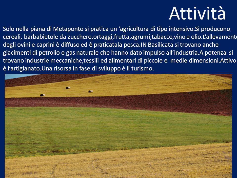 Attività Solo nella piana di Metaponto si pratica un 'agricoltura di tipo intensivo.Si producono cereali, barbabietole da zucchero,ortaggi,frutta,agrumi,tabacco,vino e olio.L'allevamento degli ovini e caprini è diffuso ed è praticatala pesca.IN Basilicata si trovano anche giacimenti di petrolio e gas naturale che hanno dato impulso all'industria.A potenza si trovano industrie meccaniche,tessili ed alimentari di piccole e medie dimensioni.Attivo è l'artigianato.Una risorsa in fase di sviluppo è il turismo.