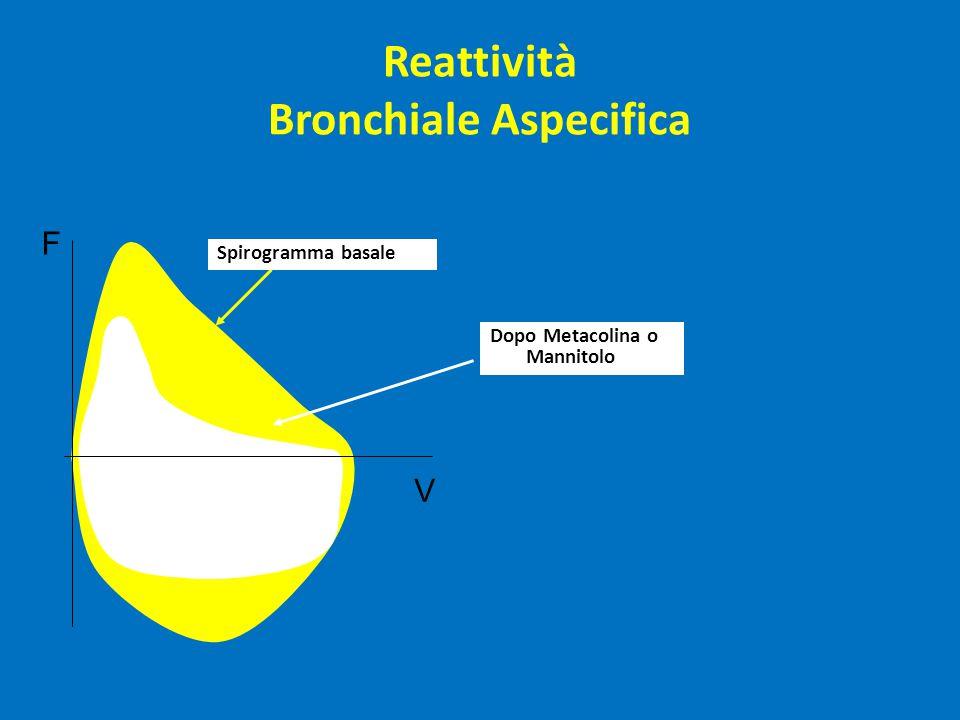 F V Spirogramma basale Dopo Metacolina o Mannitolo Reattività Bronchiale Aspecifica