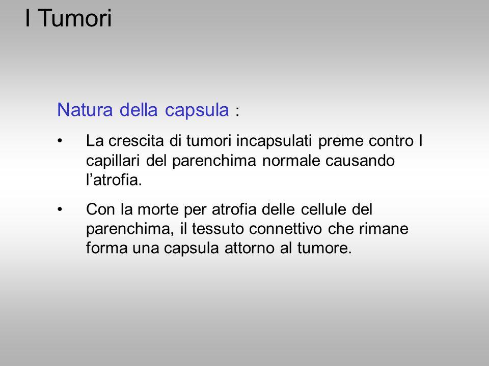 I Tumori Natura della capsula : La crescita di tumori incapsulati preme contro I capillari del parenchima normale causando l'atrofia. Con la morte per
