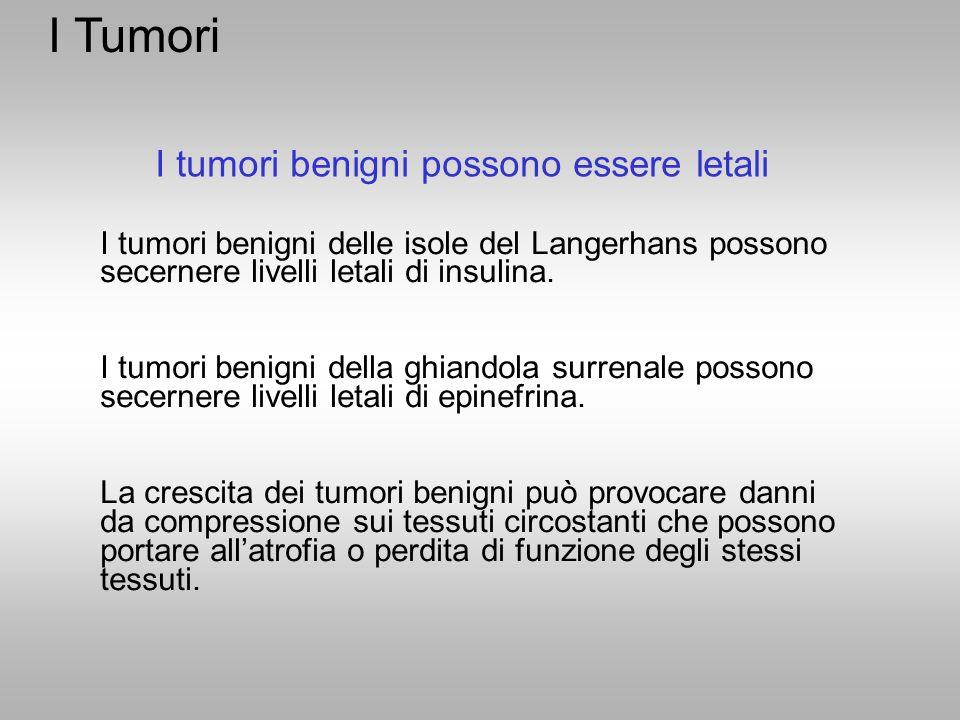 I Tumori I tumori benigni possono essere letali I tumori benigni delle isole del Langerhans possono secernere livelli letali di insulina. I tumori ben
