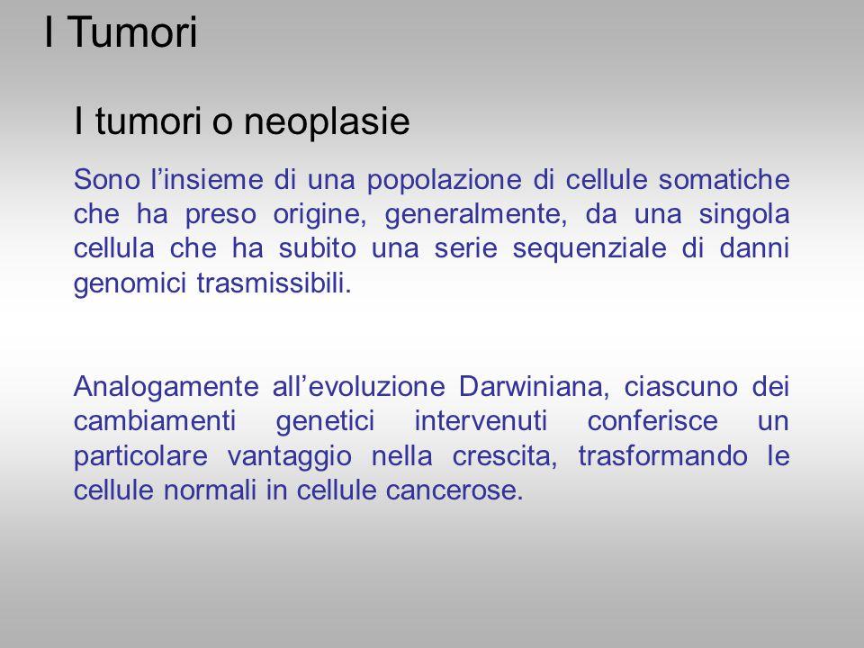 I tumori o neoplasie Sono l'insieme di una popolazione di cellule somatiche che ha preso origine, generalmente, da una singola cellula che ha subito u