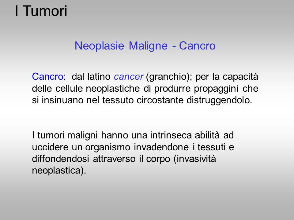 I Tumori Neoplasie Maligne - Cancro Cancro: dal latino cancer (granchio); per la capacità delle cellule neoplastiche di produrre propaggini che si ins