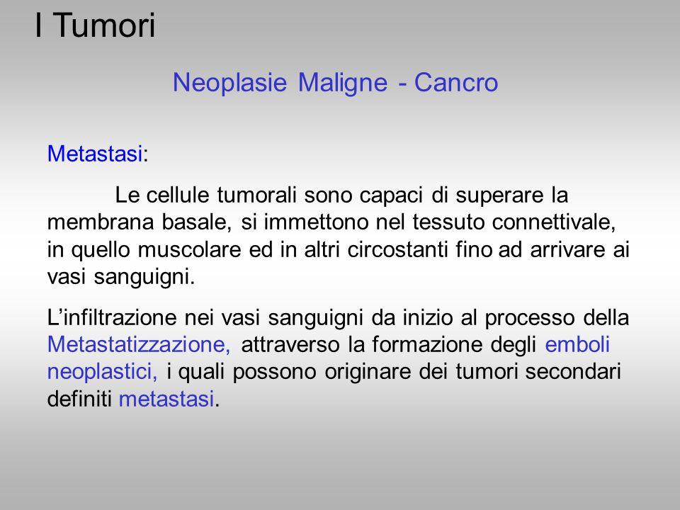 I Tumori Neoplasie Maligne - Cancro Metastasi: Le cellule tumorali sono capaci di superare la membrana basale, si immettono nel tessuto connettivale,