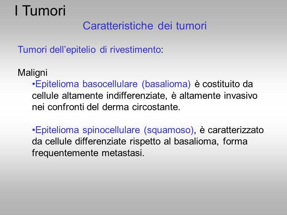 I Tumori Tumori dell'epitelio di rivestimento: Maligni Epitelioma basocellulare (basalioma) è costituito da cellule altamente indifferenziate, è altam