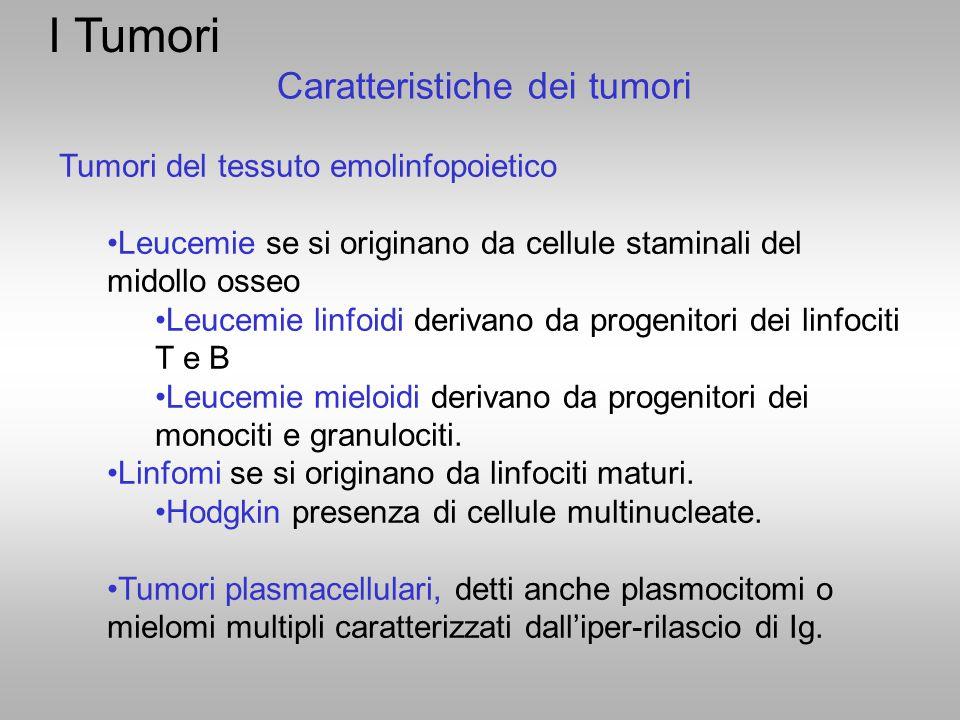 Tumori del tessuto emolinfopoietico Leucemie se si originano da cellule staminali del midollo osseo Leucemie linfoidi derivano da progenitori dei linf