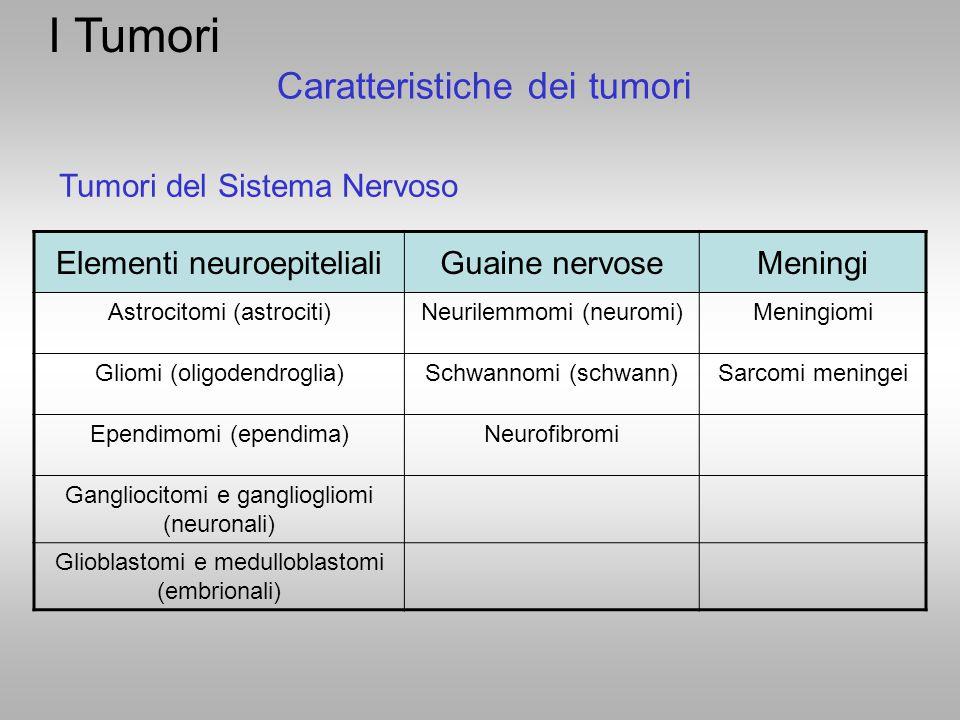 Tumori del Sistema Nervoso Caratteristiche dei tumori Elementi neuroepitelialiGuaine nervoseMeningi Astrocitomi (astrociti)Neurilemmomi (neuromi)Menin