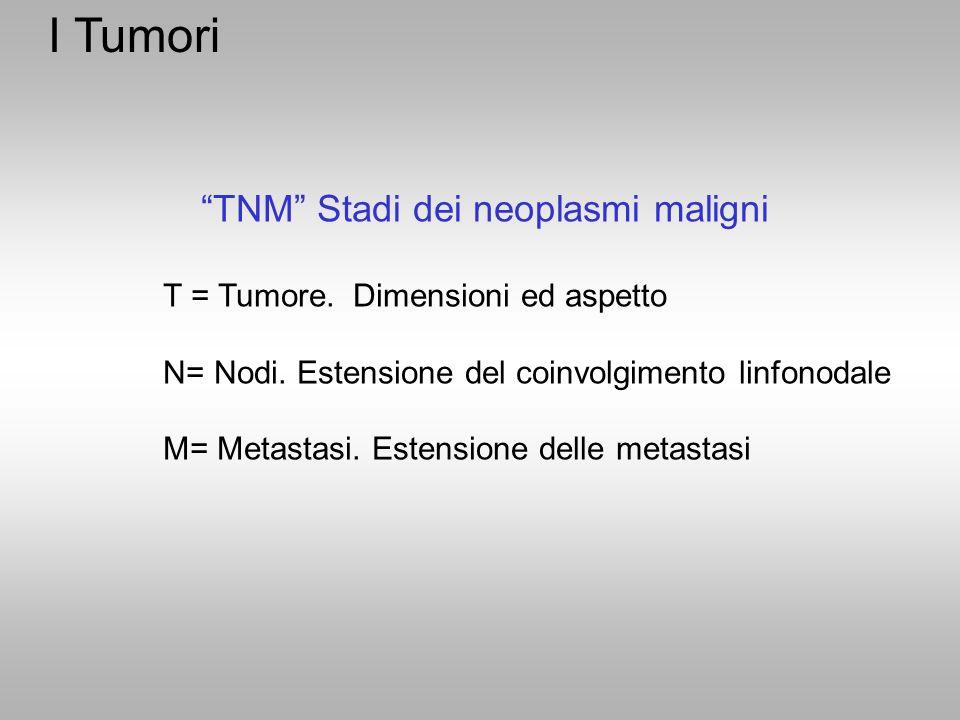 """""""TNM"""" Stadi dei neoplasmi maligni T = Tumore. Dimensioni ed aspetto N= Nodi. Estensione del coinvolgimento linfonodale M= Metastasi. Estensione delle"""