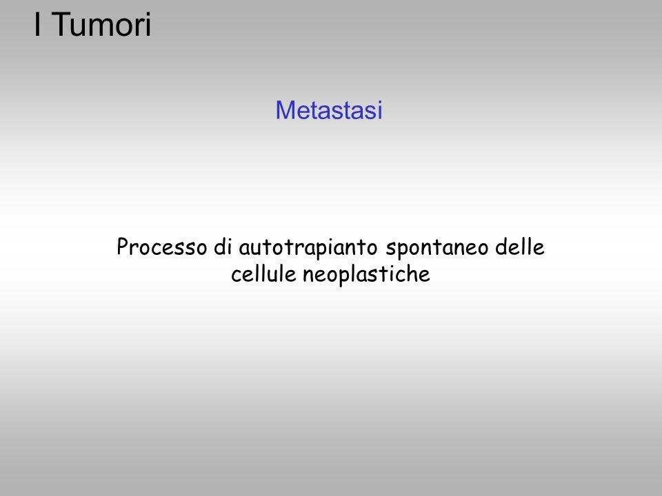 Metastasi Processo di autotrapianto spontaneo delle cellule neoplastiche