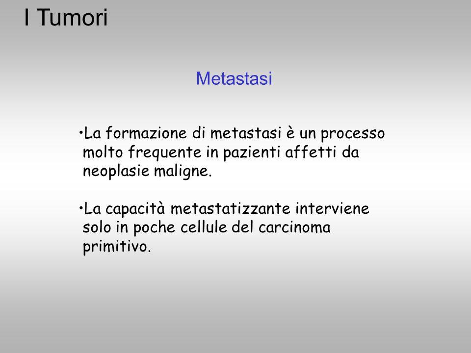 I Tumori Metastasi La formazione di metastasi è un processo molto frequente in pazienti affetti da neoplasie maligne. La capacità metastatizzante inte