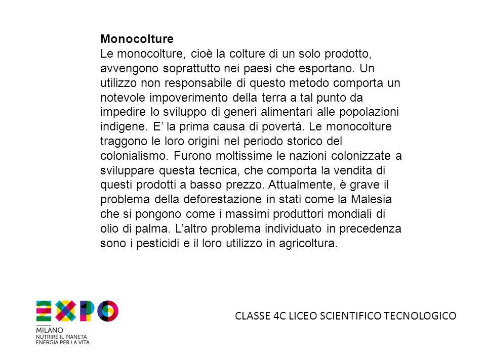 Monocolture Le monocolture, cioè la colture di un solo prodotto, avvengono soprattutto nei paesi che esportano. Un utilizzo non responsabile di questo