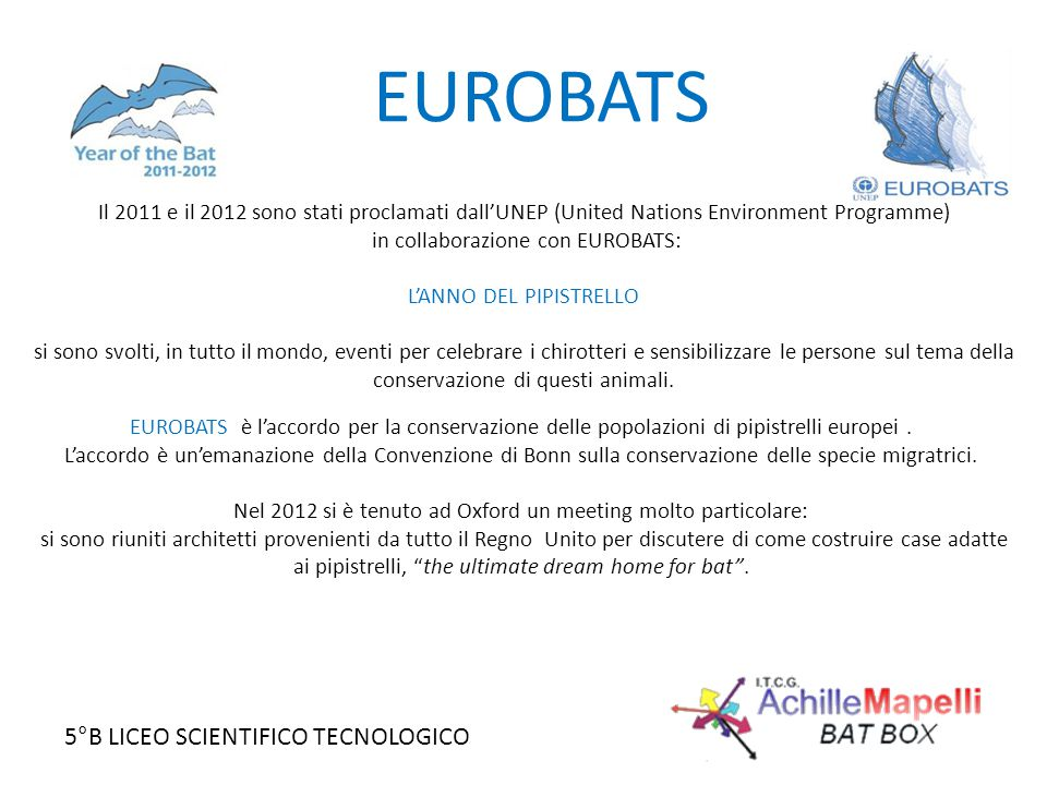 5°B LICEO SCIENTIFICO TECNOLOGICO EUROBATS Il 2011 e il 2012 sono stati proclamati dall'UNEP (United Nations Environment Programme) in collaborazione