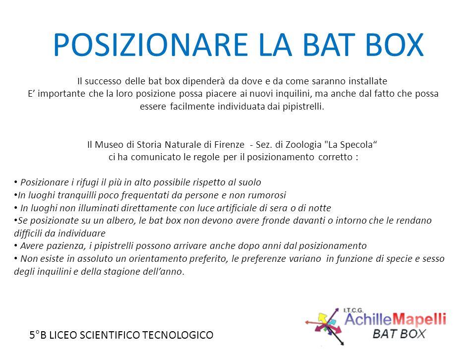 5°B LICEO SCIENTIFICO TECNOLOGICO POSIZIONARE LA BAT BOX Il successo delle bat box dipenderà da dove e da come saranno installate E' importante che la