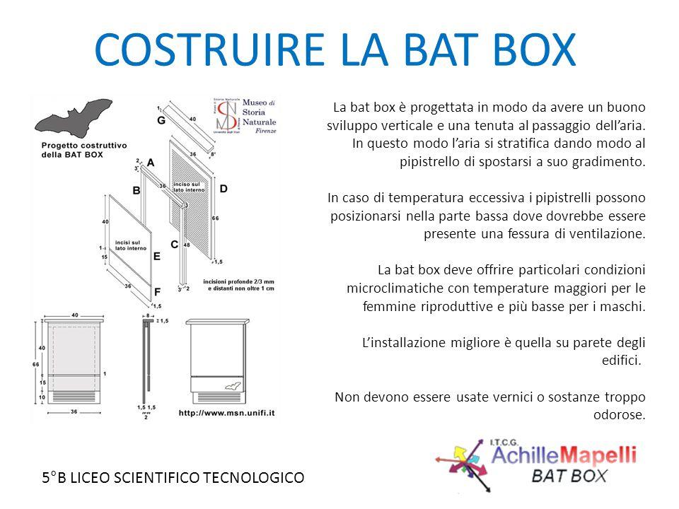 5°B LICEO SCIENTIFICO TECNOLOGICO COSTRUIRE LA BAT BOX La bat box è progettata in modo da avere un buono sviluppo verticale e una tenuta al passaggio