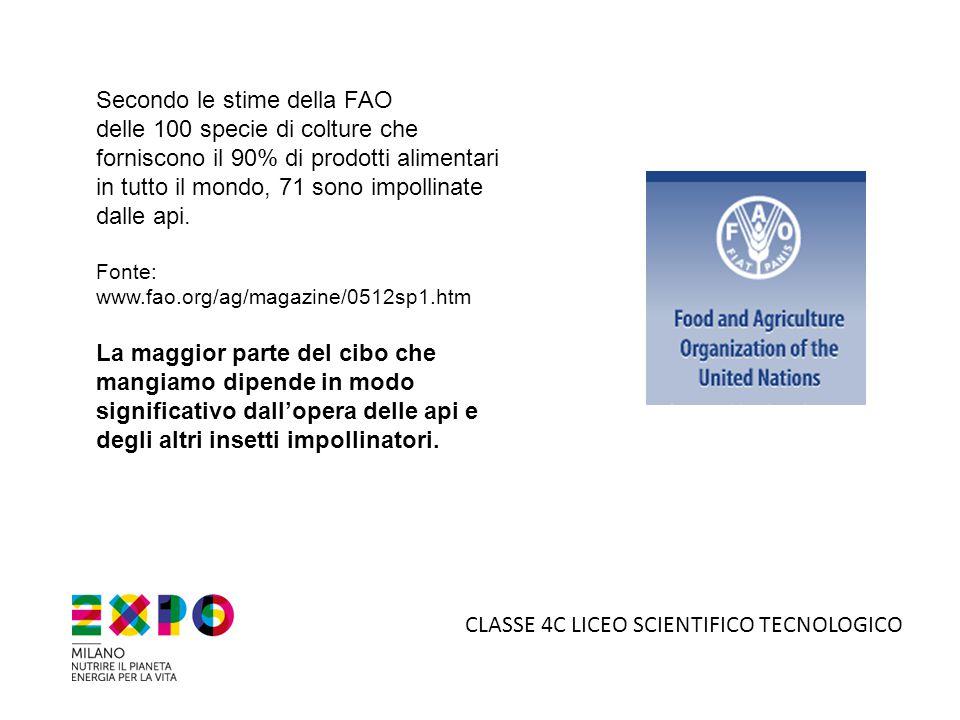 5°B LICEO SCIENTIFICO TECNOLOGICO IL MOTIVO DELLA SCELTA: La Cooperativa Sociale 2000 del Consorzio Ex.it gestisce all'interno della Casa Circondariale di Monza un laboratorio di falegnameria artigianale.