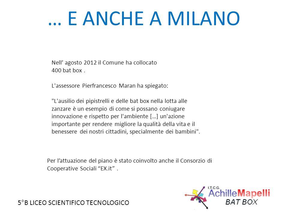 5°B LICEO SCIENTIFICO TECNOLOGICO … E ANCHE A MILANO Nell' agosto 2012 il Comune ha collocato 400 bat box. L'assessore Pierfrancesco Maran ha spiegato