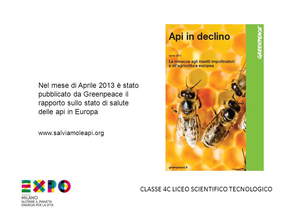 Nel mese di Aprile 2013 è stato pubblicato da Greenpeace il rapporto sullo stato di salute delle api in Europa www.salviamoleapi.org CLASSE 4C LICEO S