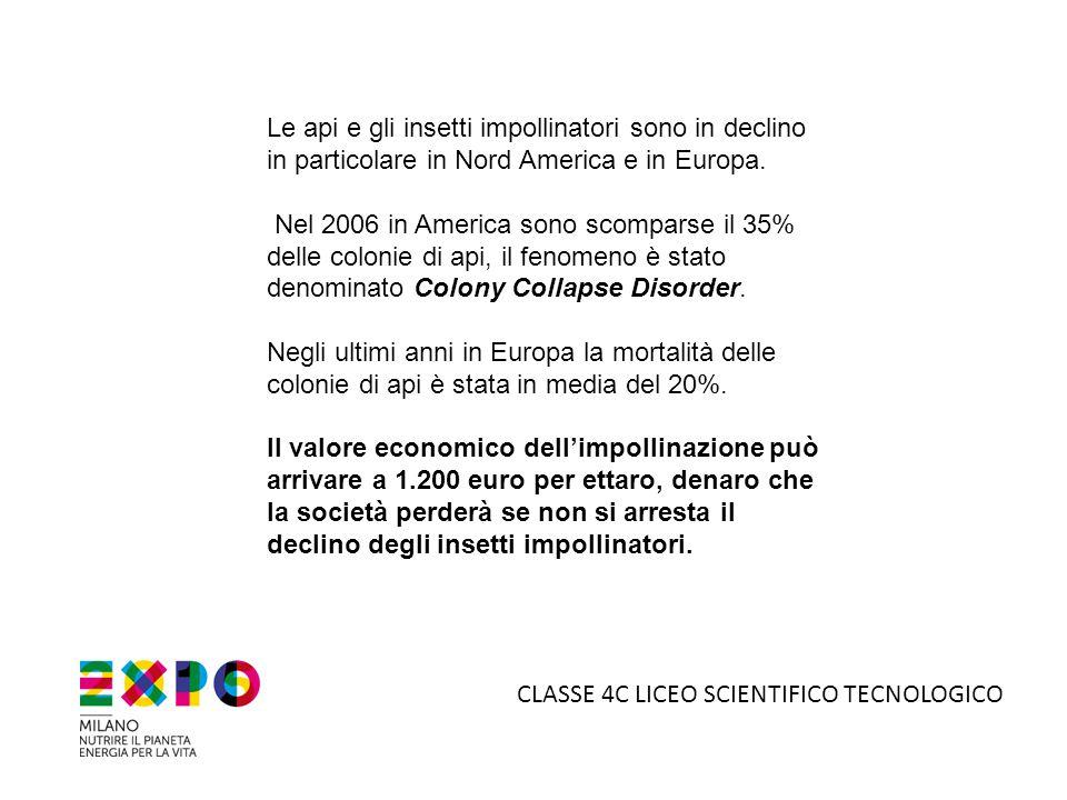 5°B LICEO SCIENTIFICO TECNOLOGICO Dietro alle bat box: il nostro Preside Enrico Danili; l'assessore all'istruzione dott.