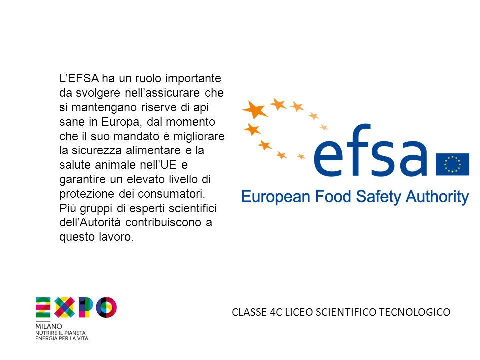 L'EFSA ha un ruolo importante da svolgere nell'assicurare che si mantengano riserve di api sane in Europa, dal momento che il suo mandato è migliorare