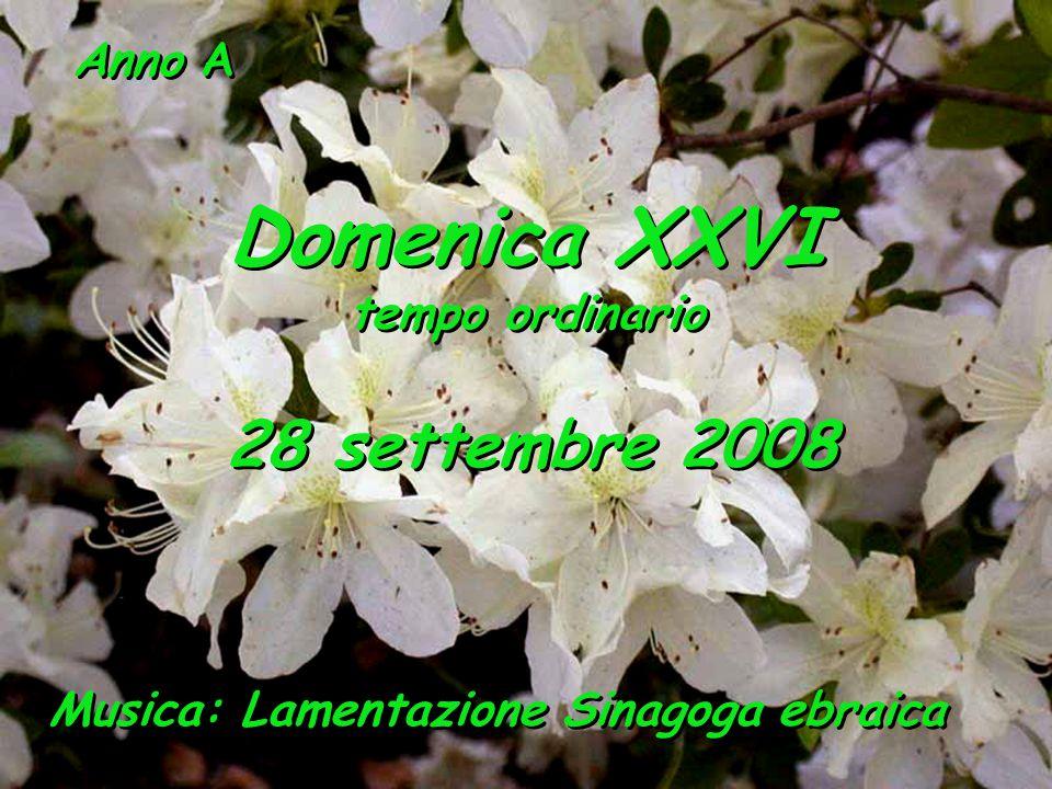 Anno A Domenica XXVI tempo ordinario Domenica XXVI tempo ordinario 28 settembre 2008 Musica: Lamentazione Sinagoga ebraica