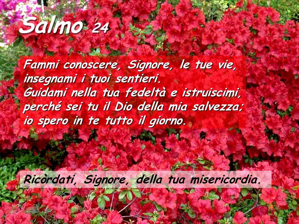Salmo 24 Fammi conoscere, Signore, le tue vie, insegnami i tuoi sentieri.