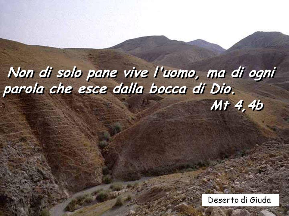 Buono e retto è il Signore, la via giusta addita ai peccatori; guida gli umili secondo giustizia, insegna ai poveri le sue vie. Le vie del Signore son