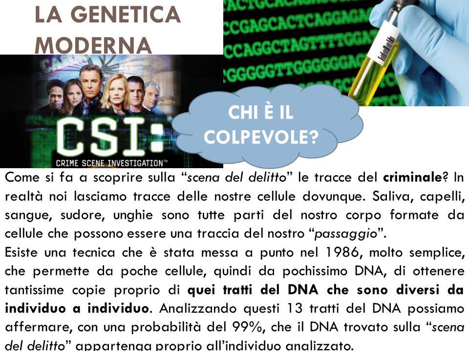 """LA GENETICA MODERNA Come si fa a scoprire sulla """"scena del delitto"""" le tracce del criminale? In realtà noi lasciamo tracce delle nostre cellule dovunq"""