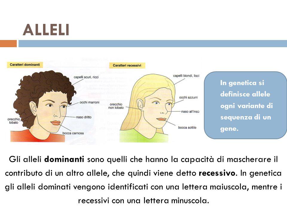 ALLELI Gli alleli dominanti sono quelli che hanno la capacità di mascherare il contributo di un altro allele, che quindi viene detto recessivo. In gen