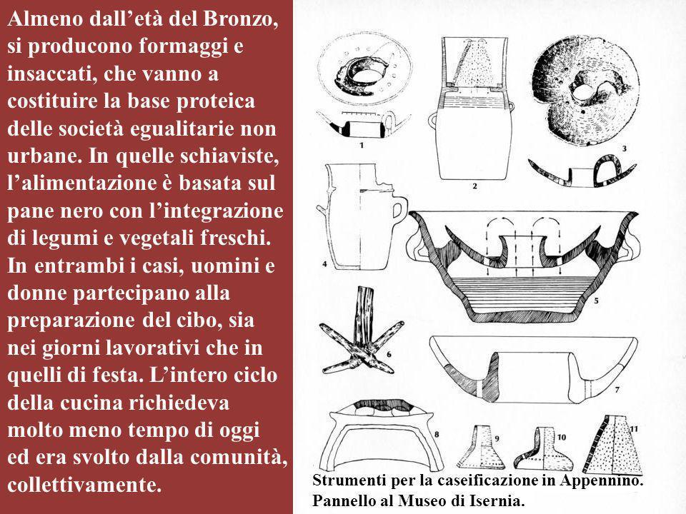 Michela Zucca Servizi Culturali Almeno dall'età del Bronzo, si producono formaggi e insaccati, che vanno a costituire la base proteica delle società e