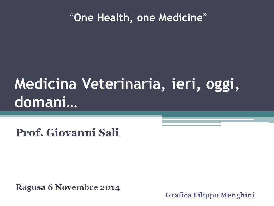"""Medicina Veterinaria, ieri, oggi, domani… Prof. Giovanni Sali Ragusa 6 Novembre 2014 """" One Health, one Medicine """" Grafica Filippo Menghini"""