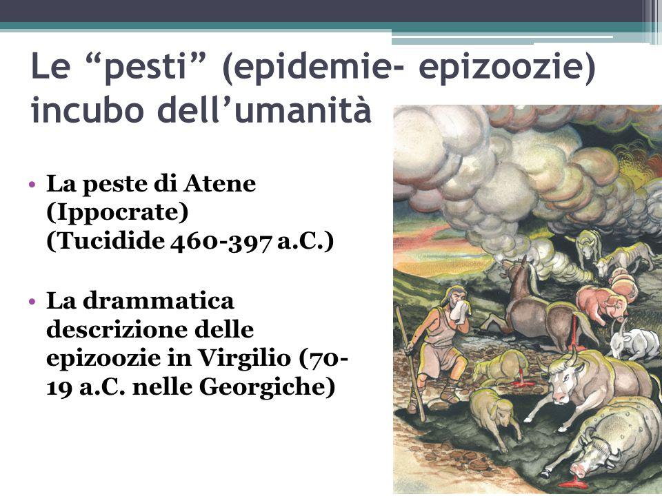"""Le """"pesti"""" (epidemie- epizoozie) incubo dell'umanità La peste di Atene (Ippocrate) (Tucidide 460-397 a.C.) La drammatica descrizione delle epizoozie i"""