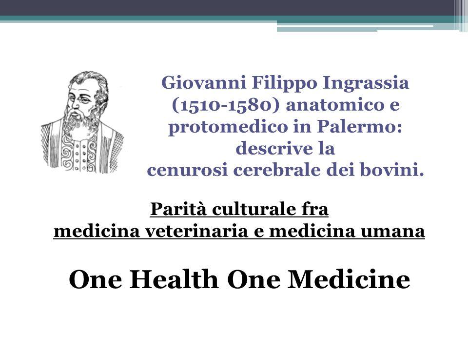 Giovanni Filippo Ingrassia (1510-1580) anatomico e protomedico in Palermo: descrive la cenurosi cerebrale dei bovini. Parità culturale fra medicina ve
