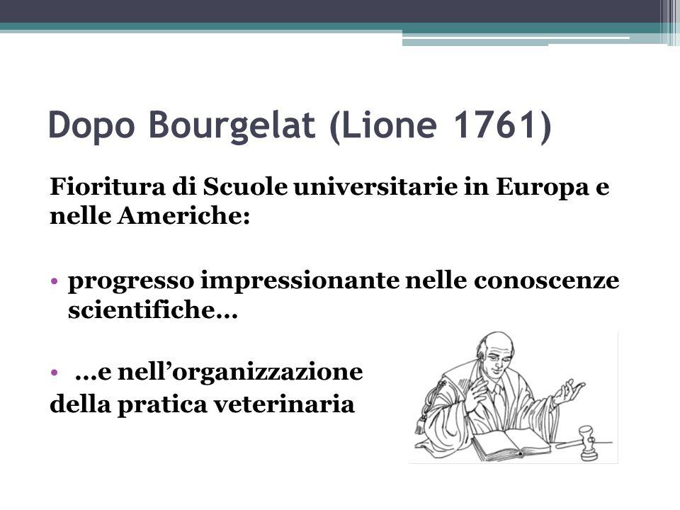 Dopo Bourgelat (Lione 1761) Fioritura di Scuole universitarie in Europa e nelle Americhe: progresso impressionante nelle conoscenze scientifiche… …e n