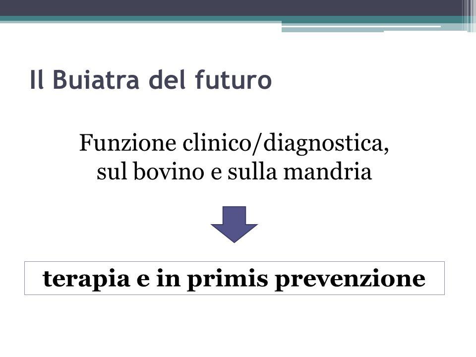 Il Buiatra del futuro Funzione clinico/diagnostica, sul bovino e sulla mandria terapia e in primis prevenzione
