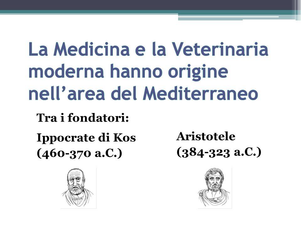 Tra i fondatori: Ippocrate di Kos (460-370 a.C.) Aristotele (384-323 a.C.)