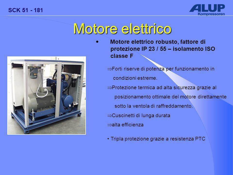 SCK 51 - 181 Motore elettrico  Motore elettrico robusto, fattore di protezione IP 23 / 55 – isolamento ISO classe F  Forti riserve di potenza per funzionamento in condizioni estreme.