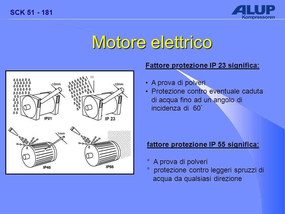 SCK 51 - 181 IP 23 60 Motore elettrico Fattore protezione IP 23 significa: A prova di polveri Protezione contro eventuale caduta di acqua fino ad un angolo di incidenza di 60 ° fattore protezione IP 55 significa: ° A prova di polveri ° protezione contro leggeri spruzzi di acqua da qualsiasi direzione