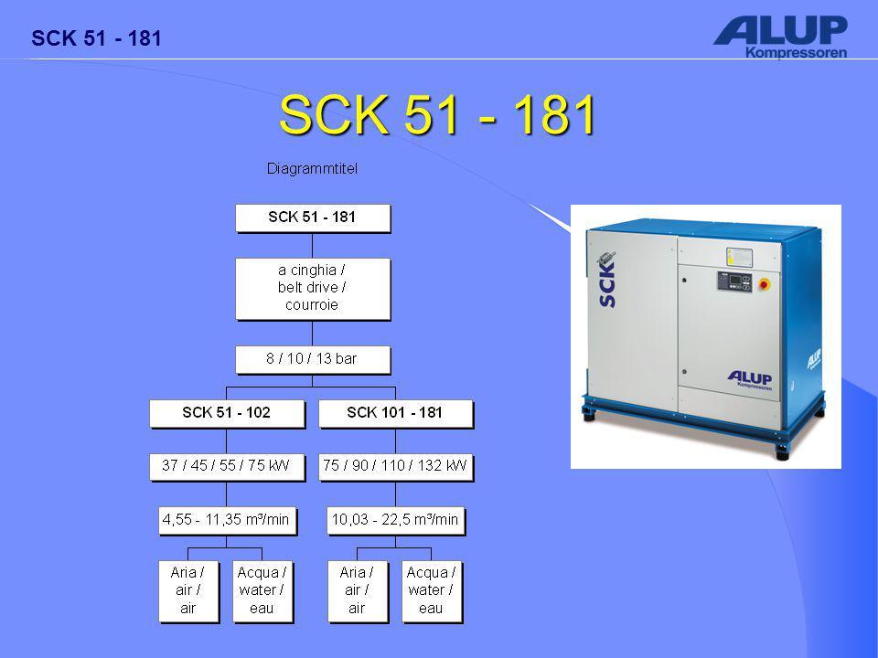 SCK 51 - 181