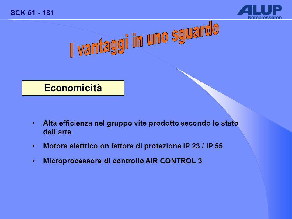 SCK 51 - 181 Economicità Alta efficienza nel gruppo vite prodotto secondo lo stato dell'arte Motore elettrico on fattore di protezione IP 23 / IP 55 Microprocessore di controllo AIR CONTROL 3